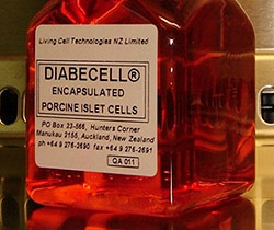 diabecell