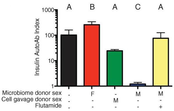 Рис. 7. Содержание антител к инсулину у различных групп подопытных самок мышей. Видно, что у самок, которым пересаживали микрофлору самцов, уровень антител к инсулину очень низкий (синий столбик). У самок, которым пересаживали микрофлору самцов, но при этом вводили блокатор андрогеновых рецепторов (желтый столбик), антител было также много, как у самок, которым пересаживали микрофлору других самок (красный столбик), а также у самок, которым ничего не пересаживали (черный столбик). У самок, которым вводили клетки самцов, а не их микрофлору, уровень антител к инсулину тоже был высоким (зеленый столбик). Рисунок из обсуждаемой статьи в Science